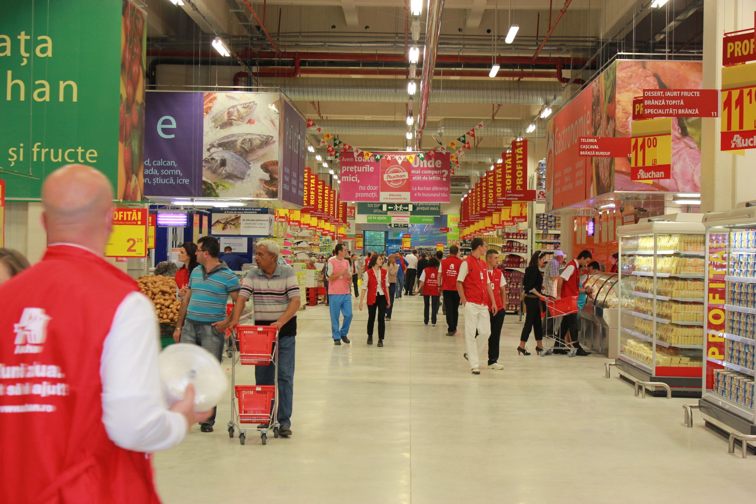 Frederic bellon auchan romania to boost turnover in 2014 for Email auchan