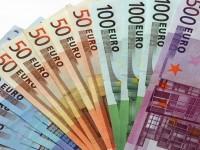 euro adoption