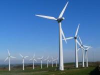 """""""wind farm"""""""