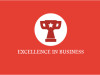 exellence in business br awards