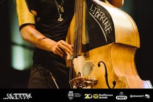 Miles Mosley JazzTM Photo Petru Cojocaru