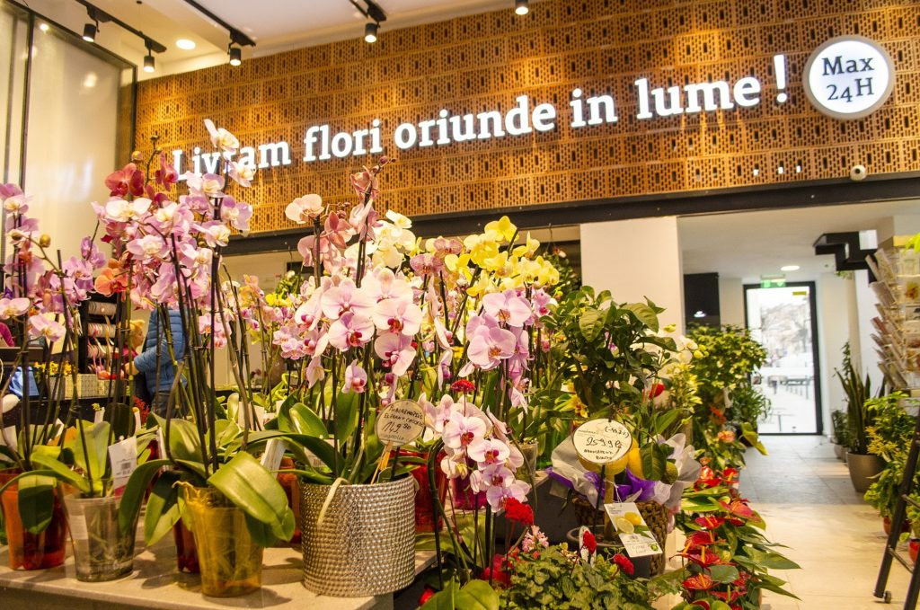 Makeithappen Turning Flowers Into Profit The Romanian Chain