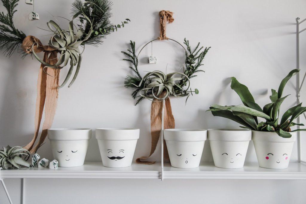 Christmas Shopping List: Botanical Pick Me Up
